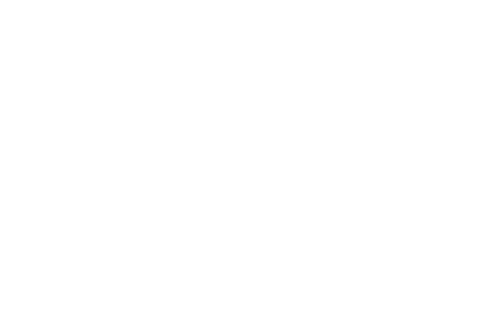 Logo Wit Forza AM